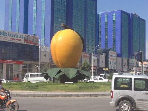 A massive apricot in the middle of the city