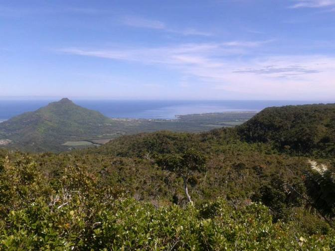 Gallivanting in the nature reserves of Mauritius