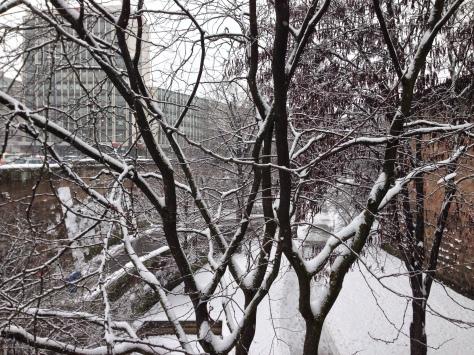 Winter Wonderland in Nuremberg